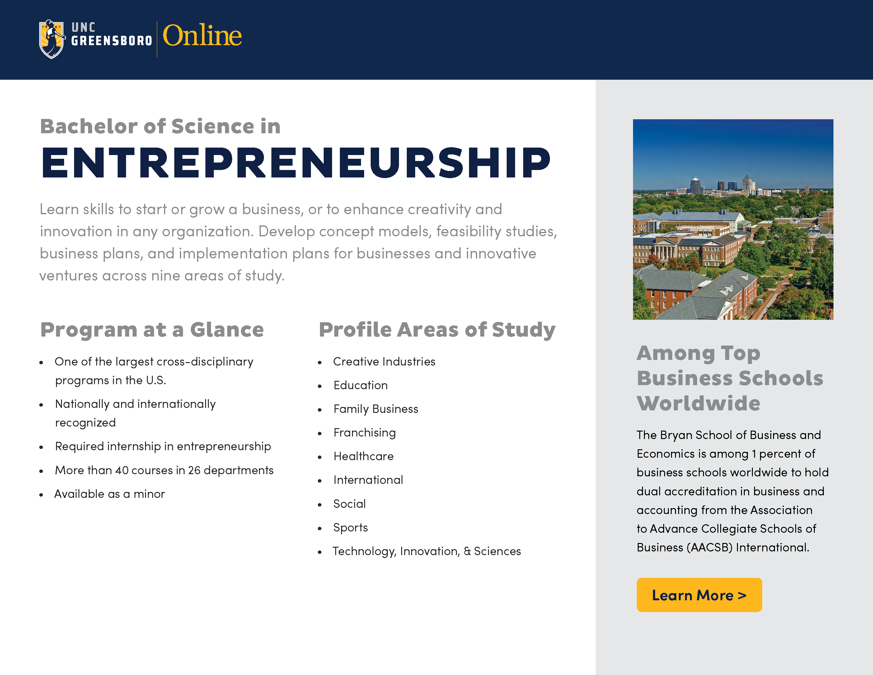 Image of BS Entrepreneurship