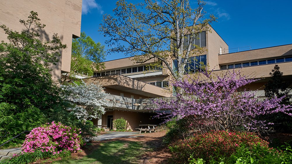 Photo of the Bryan School building with spring flowers in bloom